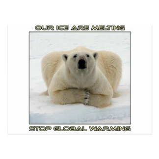 cool POLAR BEAR AND GLOBAL WARMING designs Postcard
