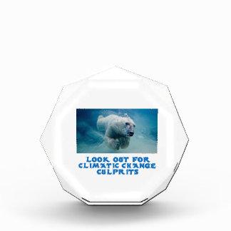 cool Polar Bear designs Acrylic Award