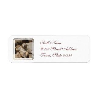 Cool Prairie Dog Address Mailing Labels