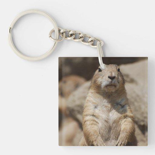Cool Prairie Dog Keychain