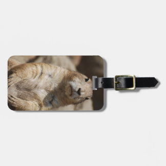 Cool Prairie Dog Luggage Tag