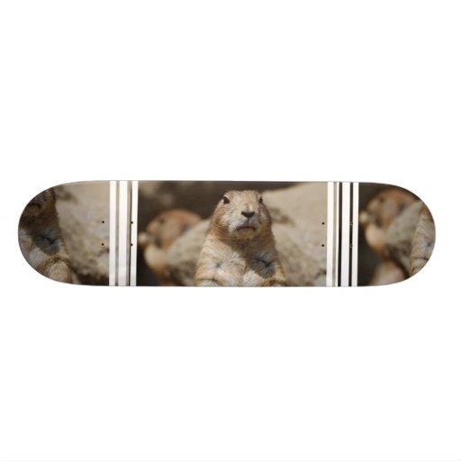 Cool Prairie Dog Skateboard