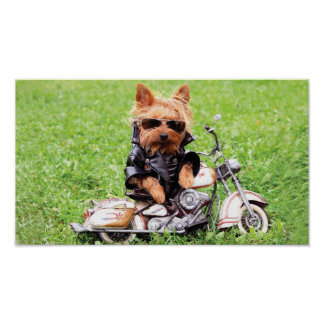 Cool Puppy Dog On Motorcycle Poster