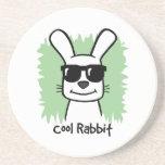 Cool Rabbit Coasters