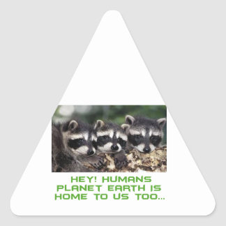 cool raccoon designs triangle sticker