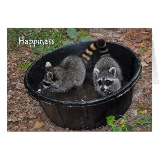 Cool Raccoons - notecard