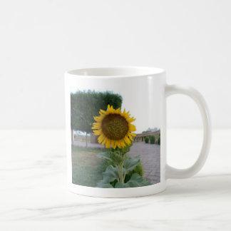 Cool Retro Trendy Hakuna Matata Gifts Sunflower de Classic White Coffee Mug
