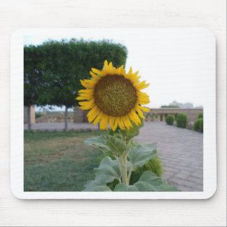 Cool Retro Trendy Hakuna Matata Gifts Sunflower de Mouse Pad