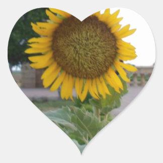 Cool Retro Trendy Hakuna Matata Gifts Sunflower de Sticker