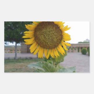 Cool Retro Trendy Hakuna Matata Gifts Sunflower de Rectangular Stickers