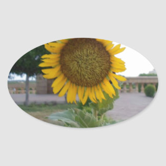 Cool Retro Trendy Hakuna Matata Gifts Sunflower de Stickers