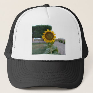Cool Retro Trendy Hakuna Matata Gifts Sunflower de Trucker Hat