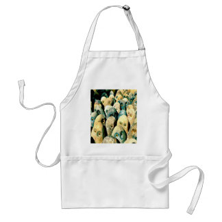 Cool Rock Stone Owl Faces with Eyes Adult Apron