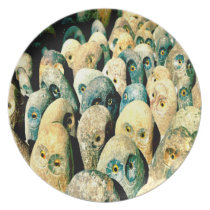 Cool Rock Stone Owl Faces with Eyes Melamine Plate