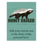 Cool Rustic Honey Badger Postcard