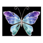 Cool Shades Rainbow Wings Butterfly Post Card