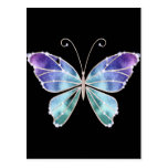Cool Shades Rainbow Wings Butterfly Postcards