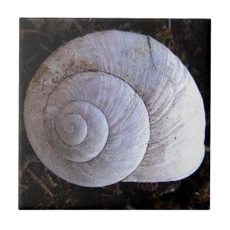 Cool snailshell tile