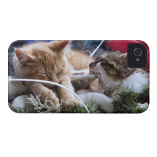 Cool Snow Cats, Two Kittens in Love, Winter Skates iPhone 4 Covers