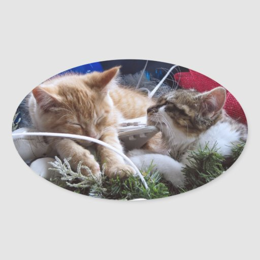 Cool Snow Cats, Two Kittens in Love, Winter Skates Oval Sticker
