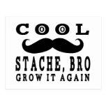 Cool Stache Bro. Grow it Again! Post Card