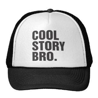 cool story bro mesh hat