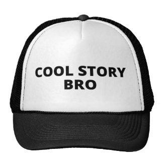 """Cool story bro"" hat"