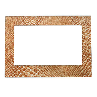 Cool Tan Snake Skin Pattern Photo Print Picture Frame Magnets