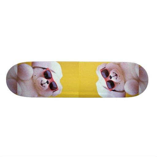 Cool teddy bear with sunglass skateboard deck