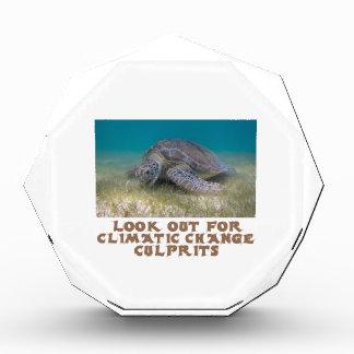cool Turtle designs Acrylic Award