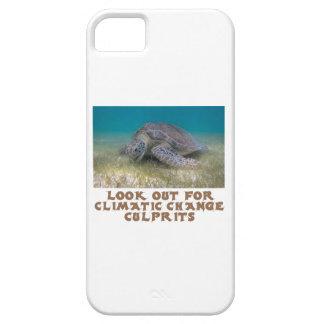 cool Turtle designs iPhone SE/5/5s Case