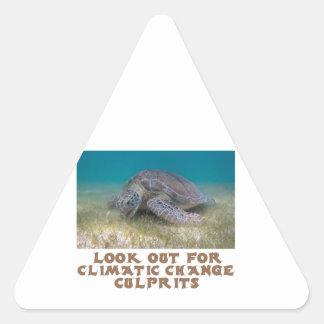 cool Turtle designs Triangle Sticker