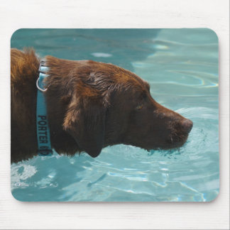 Cool water chocolate lab mouse pad