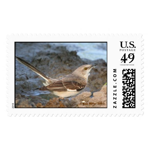 Cool Water For This Mocking Bird,  Kay Miller ... Postage Stamps