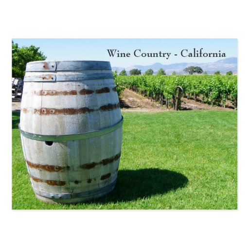 Cool Wine Barrel Postcard!