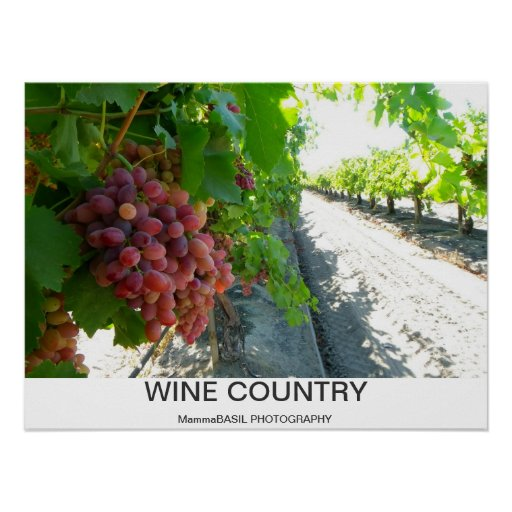 Cool Wine Country Poster!