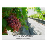 Cool Wine Country Poster! Poster