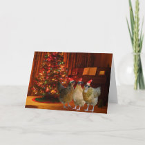 Cool Xmas Chickens Holiday Card