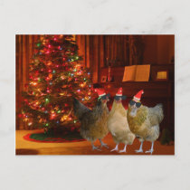 Cool Xmas Chickens Holiday Postcard