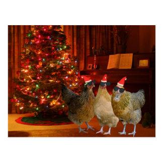 Cool Xmas Chickens Postcard