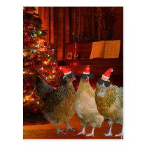 Cool Xmas Chickens Postcard