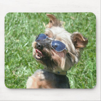 Cool Yorkshire Terrier mousepad