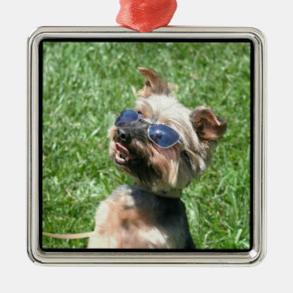 Cool Yorskshire Terrier ornament