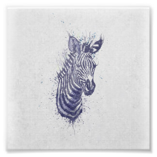 Cool zebra animal watercolour  splatters  paint photo print