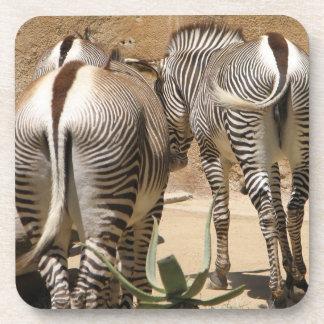 Cool Zebra Cork Coasters! Coaster