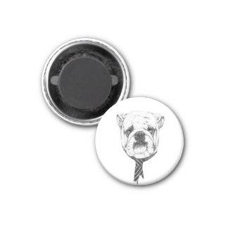 cooldog imán redondo 3 cm