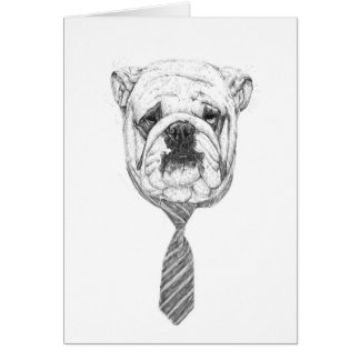 cooldog tarjeta pequeña