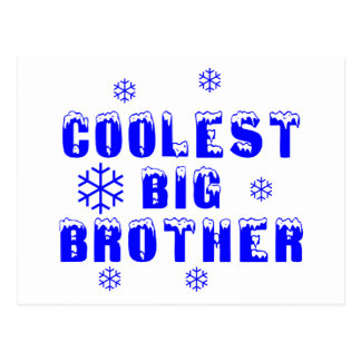 Coolest Big Brother Postcard