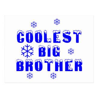 Coolest Big Brother Postcard