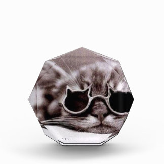 Coolest Cat alive - Acrylic Award